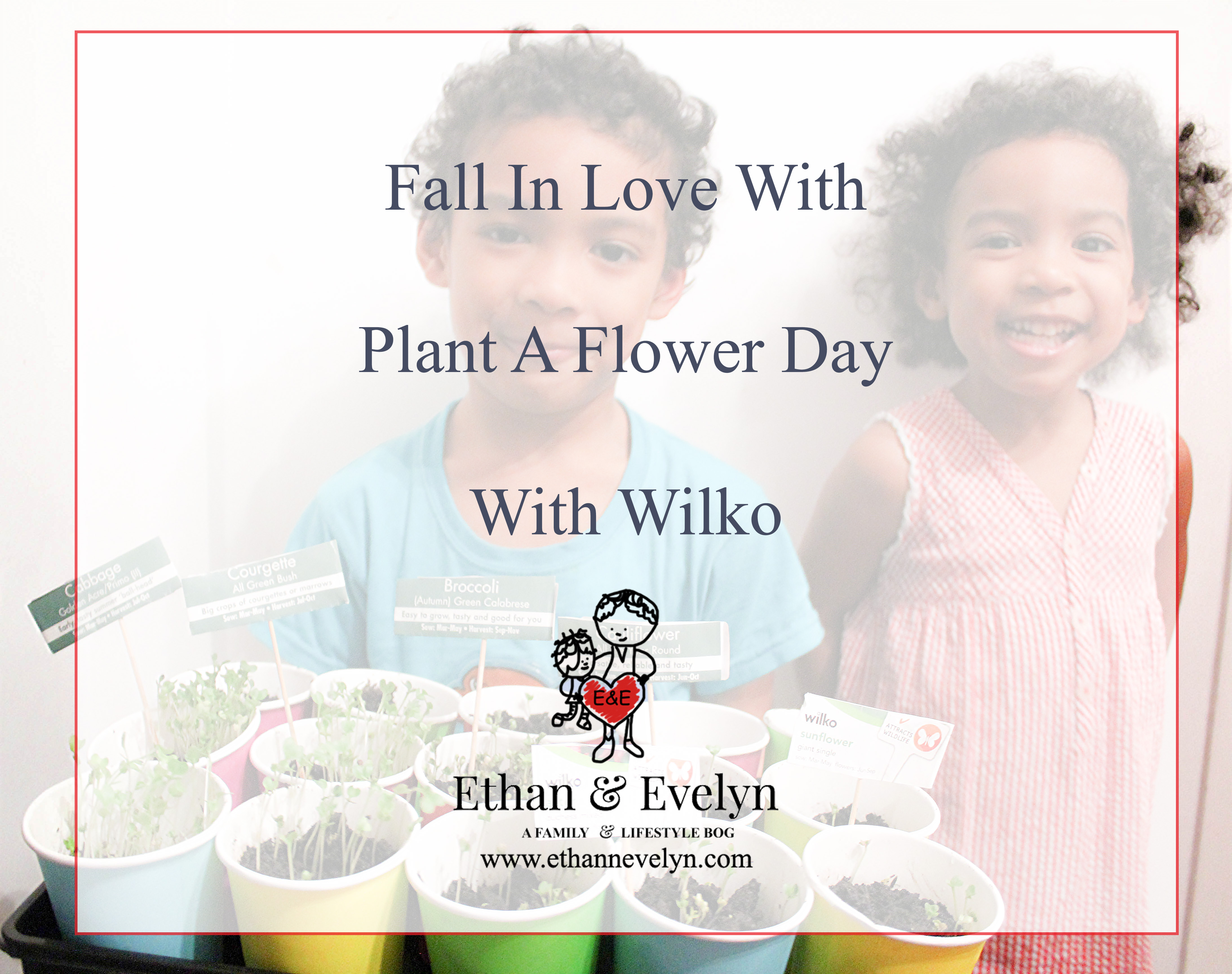 Fall In Love With Plant A Flower Day With Wilko
