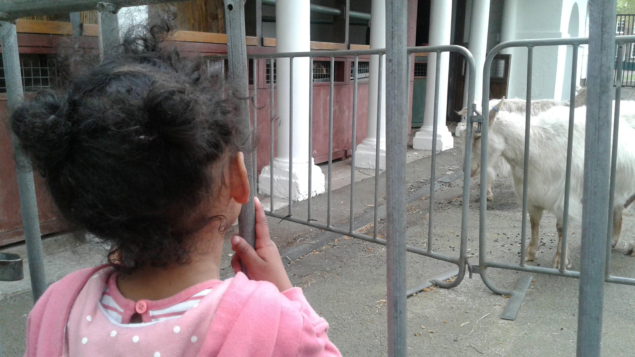 #TearsIntoSmiles with Elastoplast at Coramsfields | London