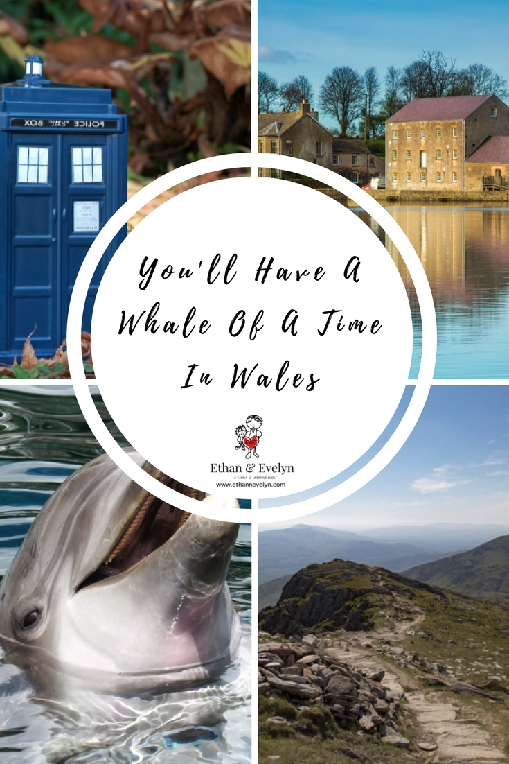 You'll Have A Whale Of A Time In Wales