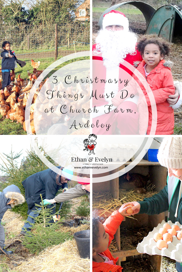 3 Christmassy Things Must Do at Church Farm_Ardeley